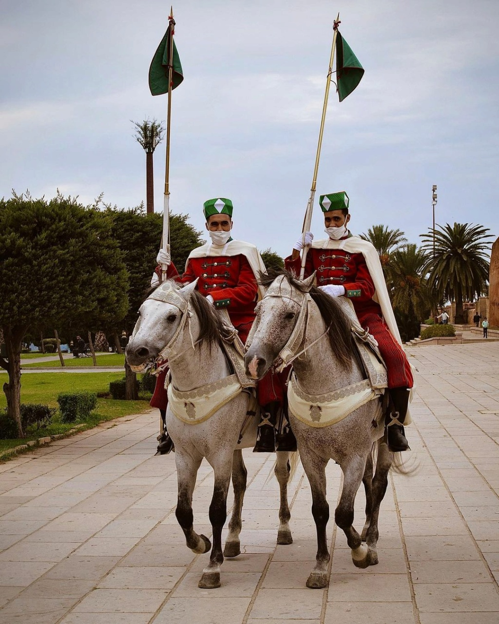 La Garde Royale Marocaine / Moroccan Royal Guard - Page 13 L_hemz10