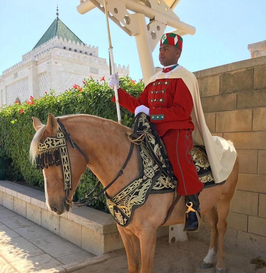 La Garde Royale Marocaine / Moroccan Royal Guard - Page 11 Screen16