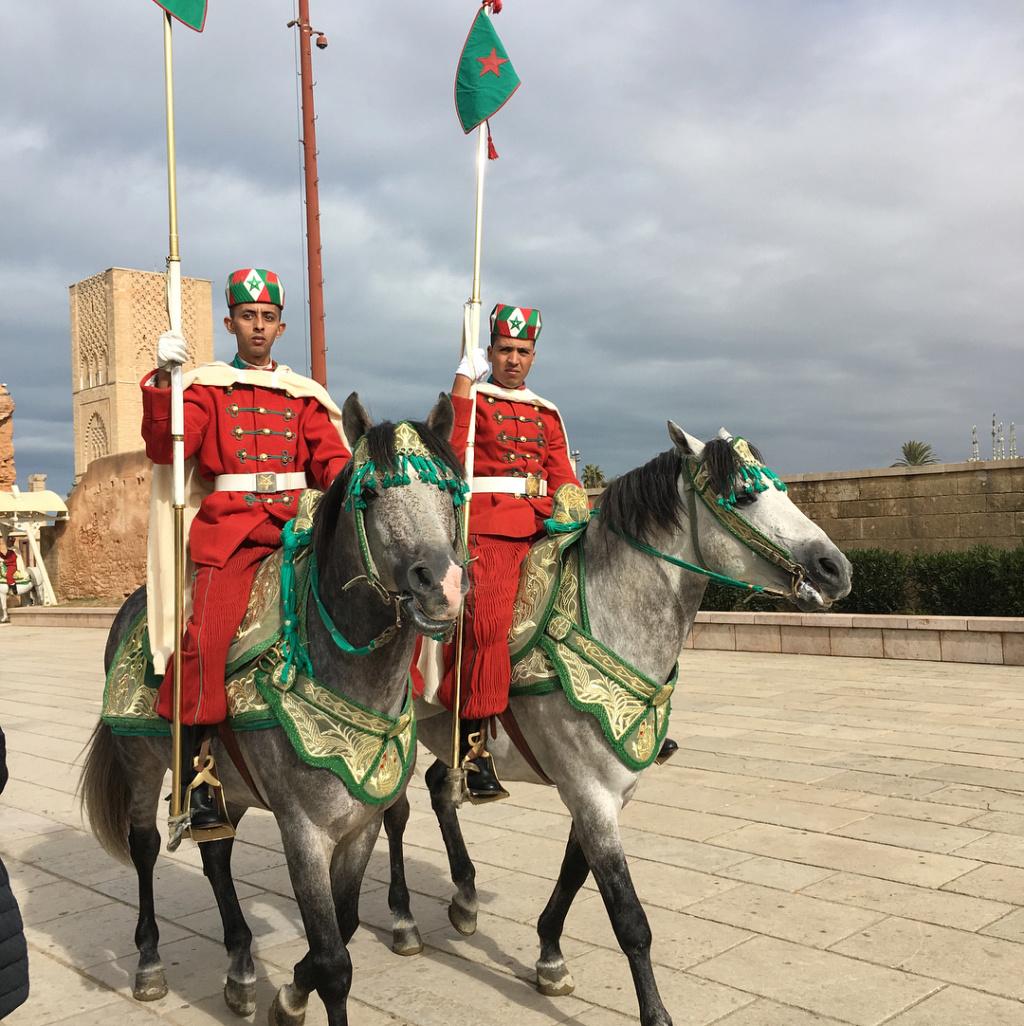 La Garde Royale Marocaine / Moroccan Royal Guard - Page 11 Vegtre10