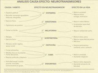 Causa Efecto de los neurotransmisores. Dibujo. Img_1213