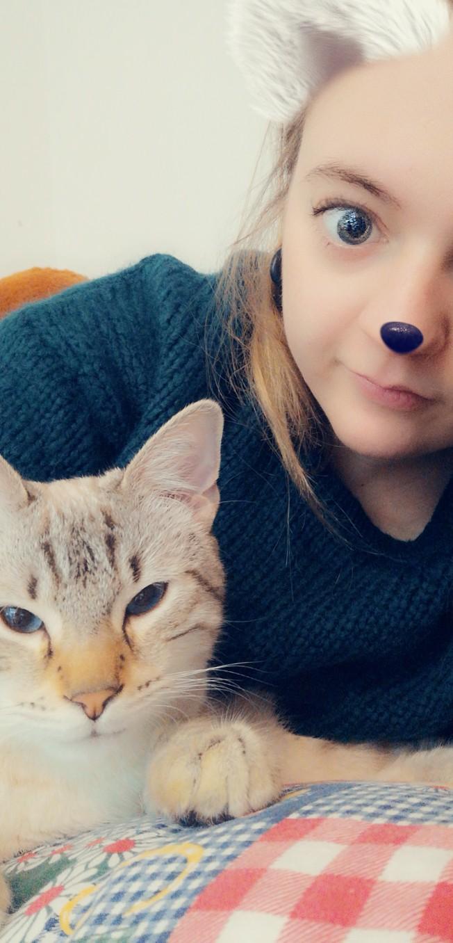 ORPHEE, chaton mâle, beige Tabby, né le 01/05/18 Snapch19
