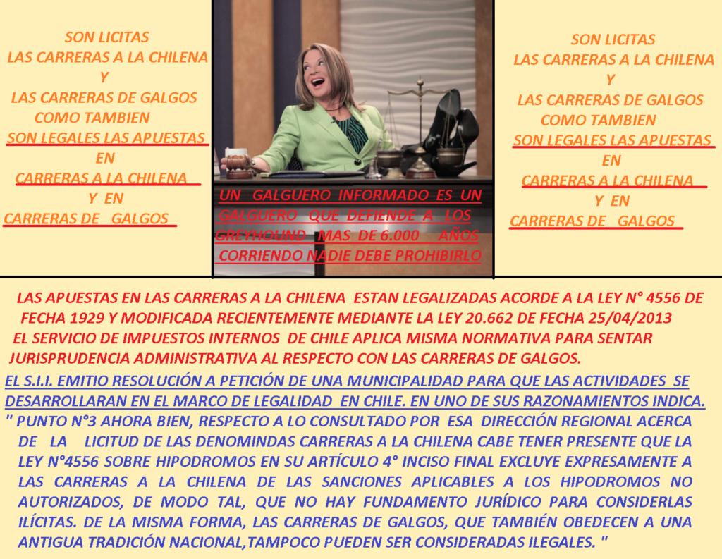 Foro gratis : CARRERAS DE CABALLOS Y GALGOS EN CHILE - Portal Apuest10