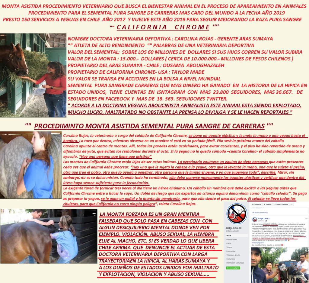 MENTIRAS MAS REPETIDAS DE LA DOCTRINA  VEGANA ABOLICIONISTA Chorme11
