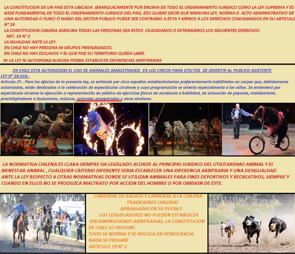 CHILE LEGISLA CON PRINCIPIO JURÍDICO DEL UTILITARISMO ANIMAL Circos10