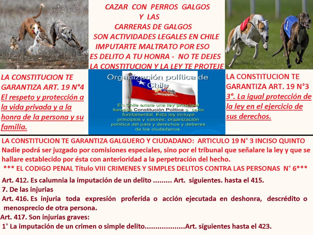 Foro gratis : CARRERAS DE CABALLOS Y GALGOS EN CHILE - Portal Delito10