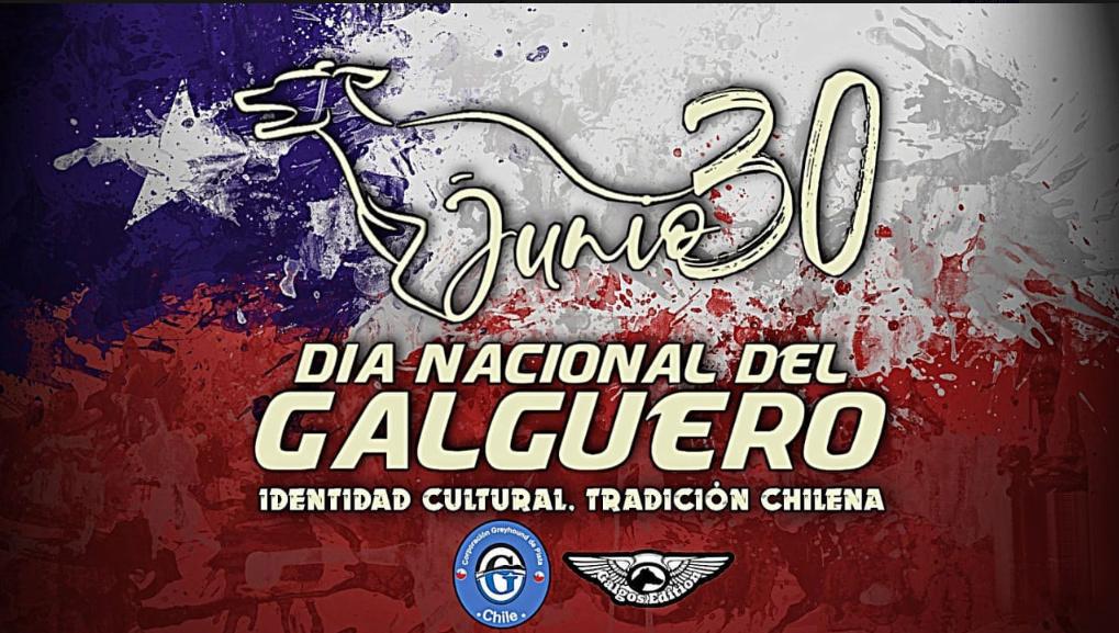 Foro gratis : CARRERAS DE CABALLOS Y GALGOS EN CHILE - Portal Dia_ga10