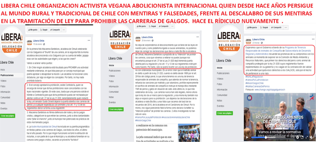 ONG VEGANA ABOLICIONISTA LIBERA MIENTE EN POYECTO DE LEY Libera10