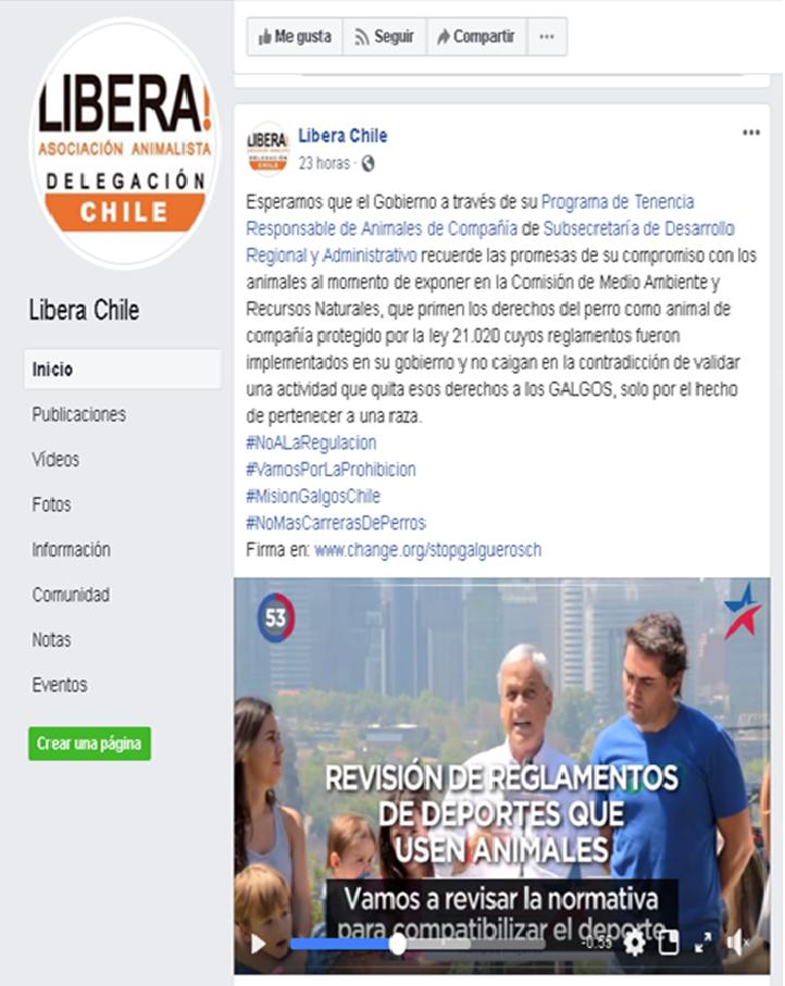 ONG VEGANA ABOLICIONISTA LIBERA MIENTE EN POYECTO DE LEY Libera14