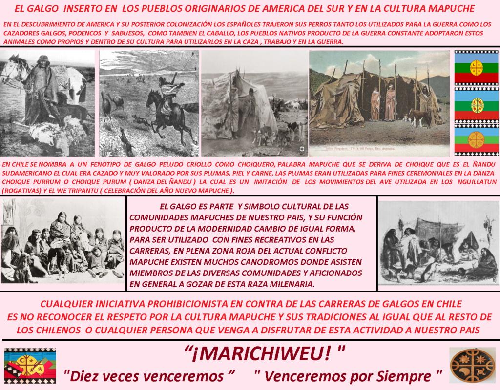 LOS GALGOS Y LAS CARRERAS  DE GALGOS EN LA CULTURA MAPUCHE Mapuch10