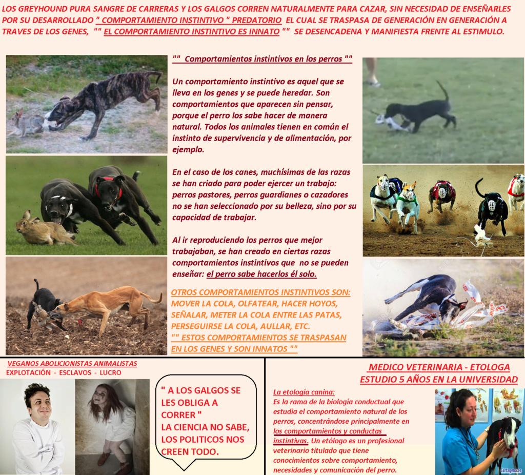 MENTIRAS MAS REPETIDAS DE LA DOCTRINA  VEGANA ABOLICIONISTA Obliga10