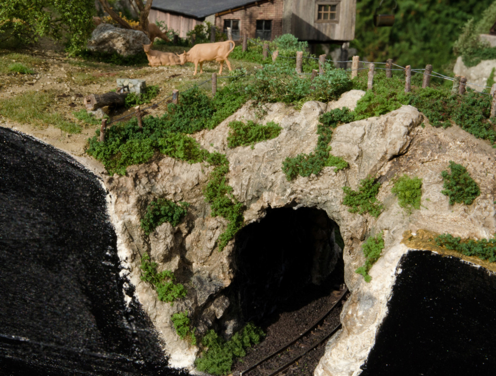 Trenet miner i forestal - Página 4 00510