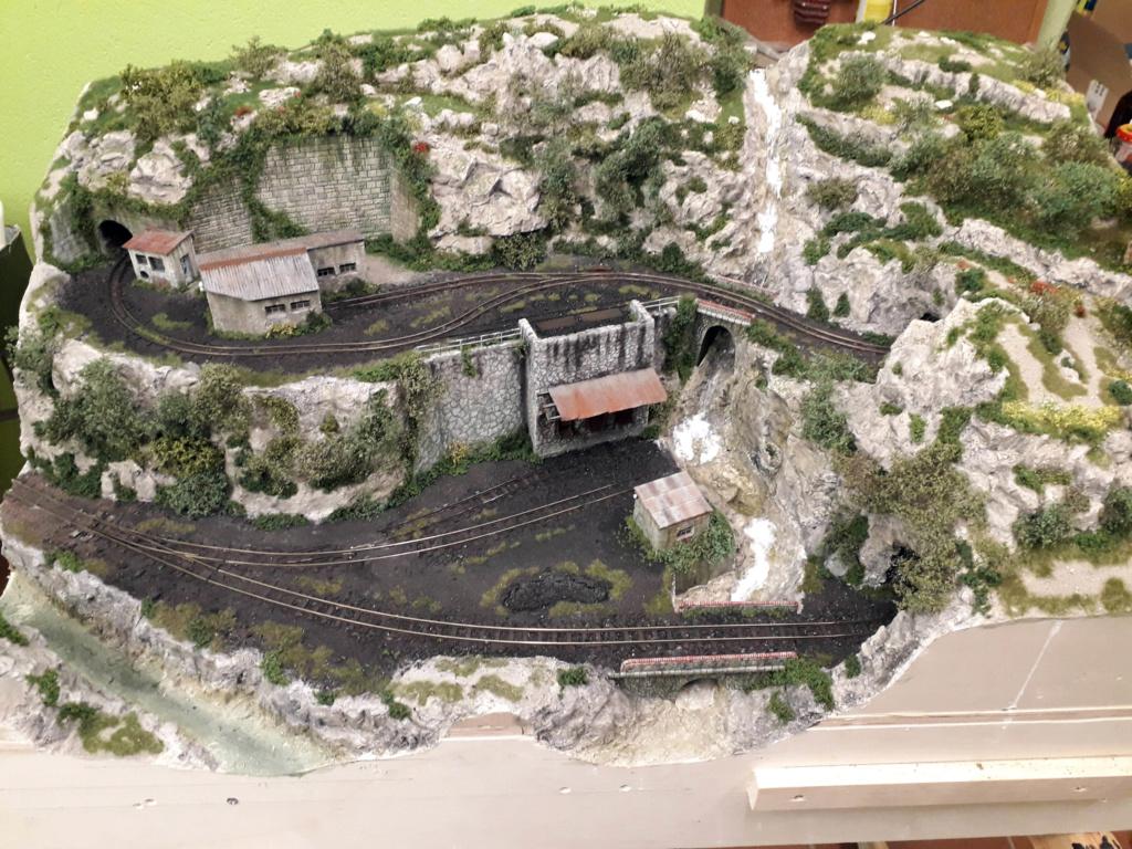 Trenet miner i forestal - Página 2 10110