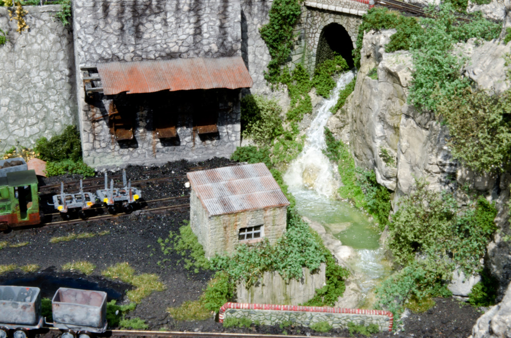 Trenet miner i forestal - Página 2 P1010
