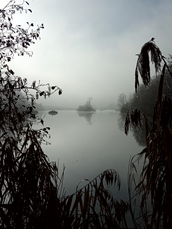 Partage photographique de vos promenades Zotang10