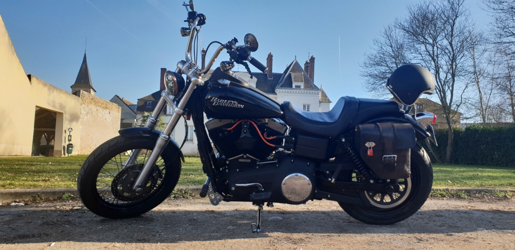 DYNA STREET BOB combien sommes nous sur Passion-Harley - Page 34 Shirle10