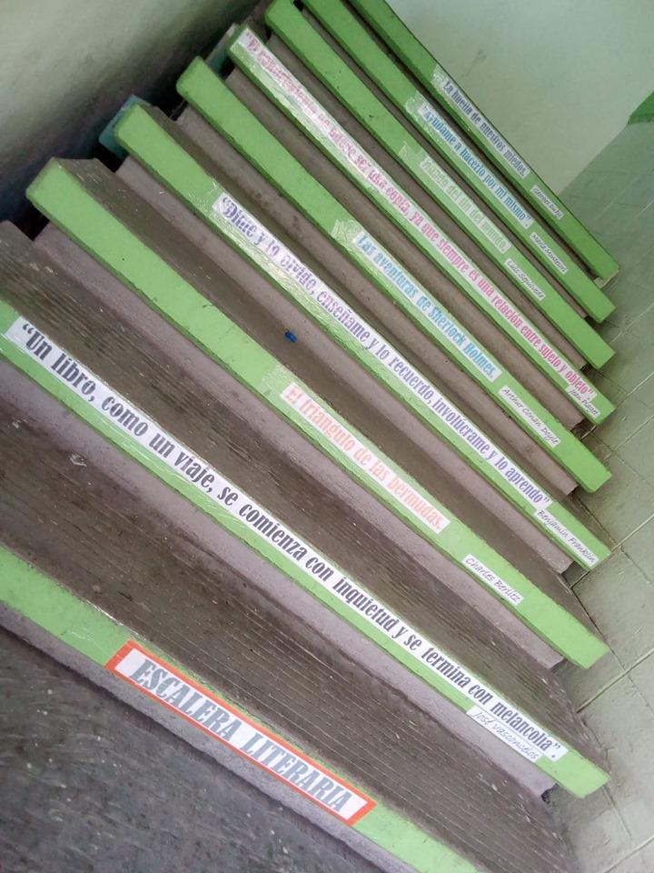 Actividad 3. Doce estrategias para las bibliotecas de las escuelas normales El110