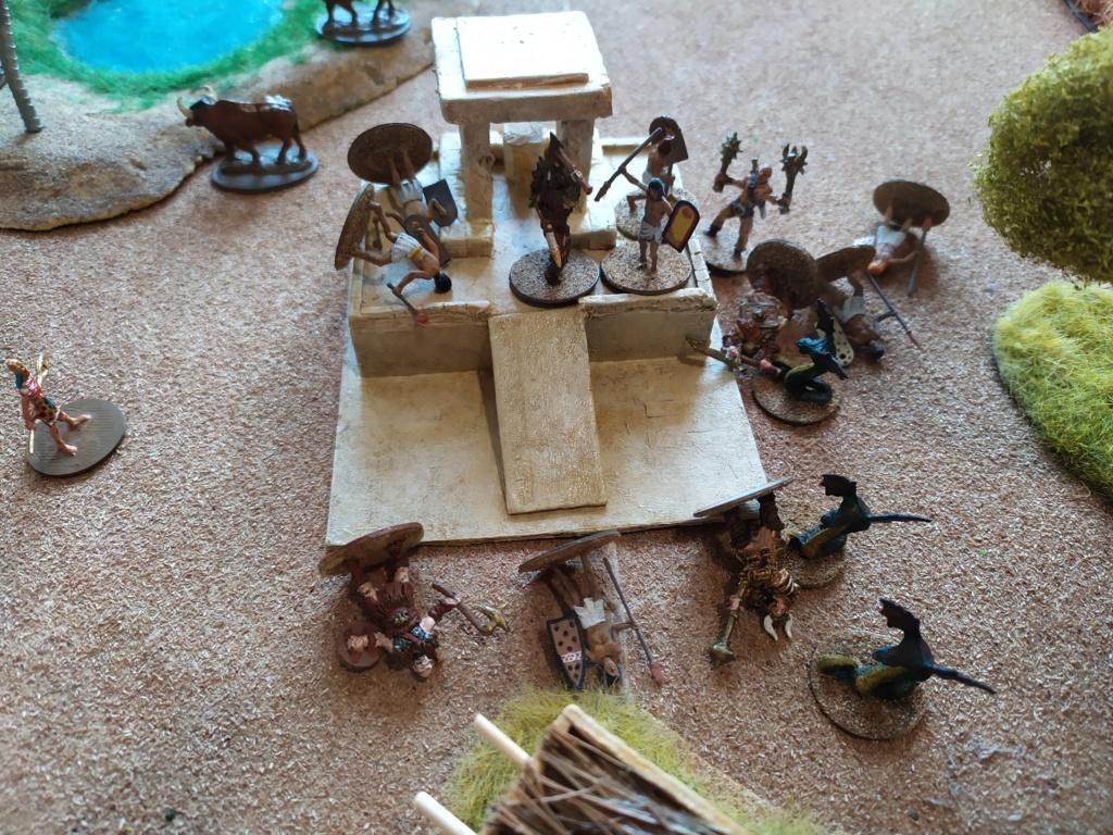 Pillage d'un village egyptien Img_2029