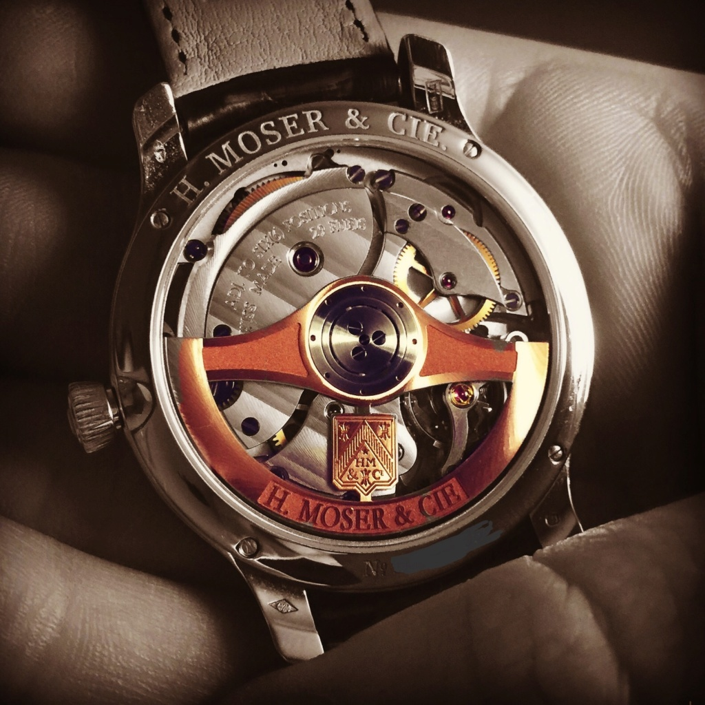 Feu de vos Dual Time - GMT - Worldtimer - tome II Img_3810