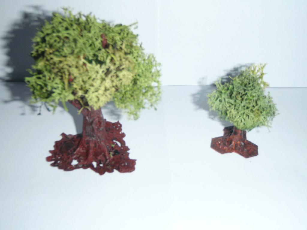 [Décors] Comment fabriquer des arbres de A à Z ? Pb150010