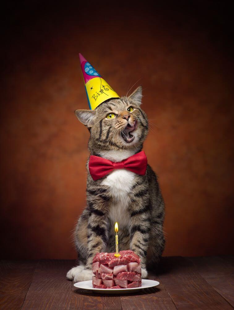 Feliz cumpleaños, Gina!! Birthd10