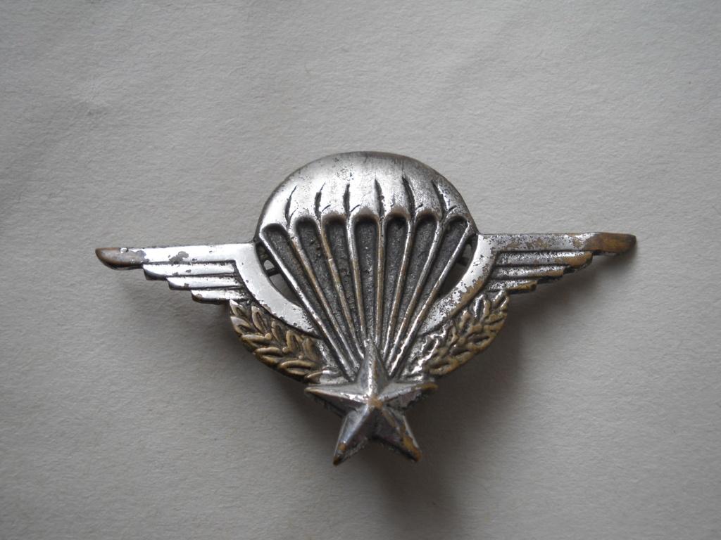Vrai-faux brevet de parachutiste. Dscn0010