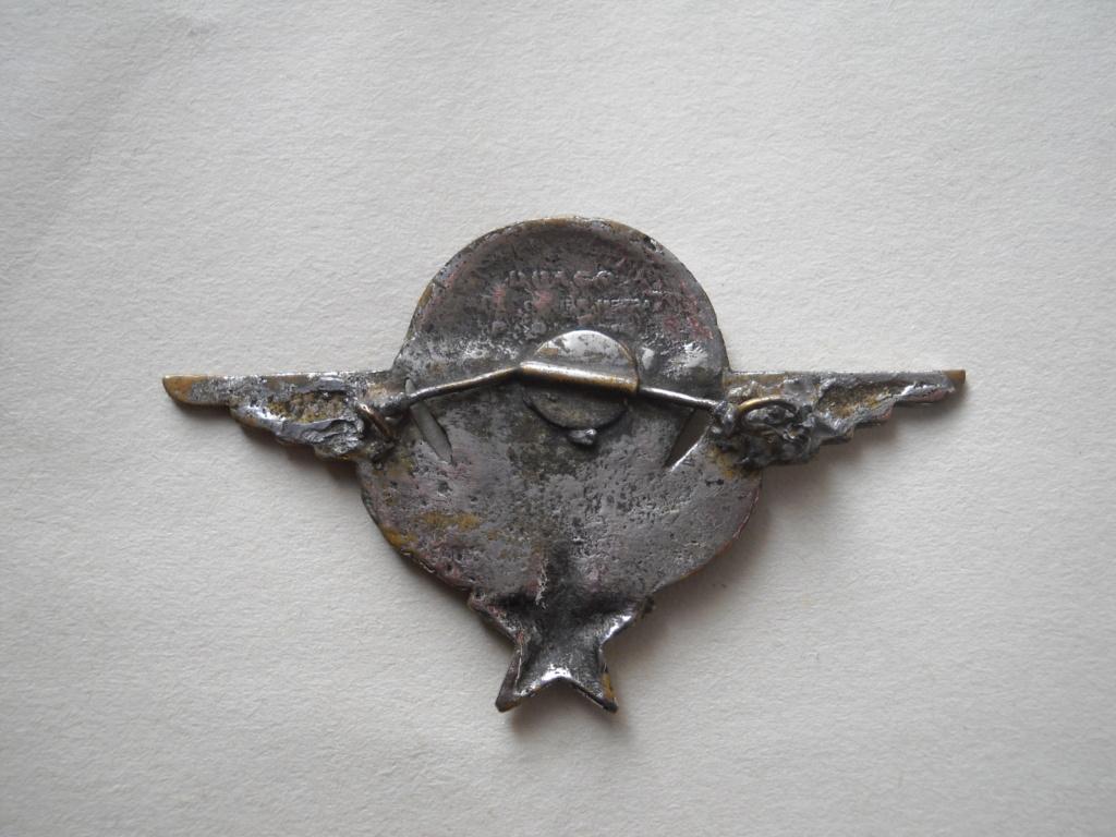 Vrai-faux brevet de parachutiste. Dscn0110