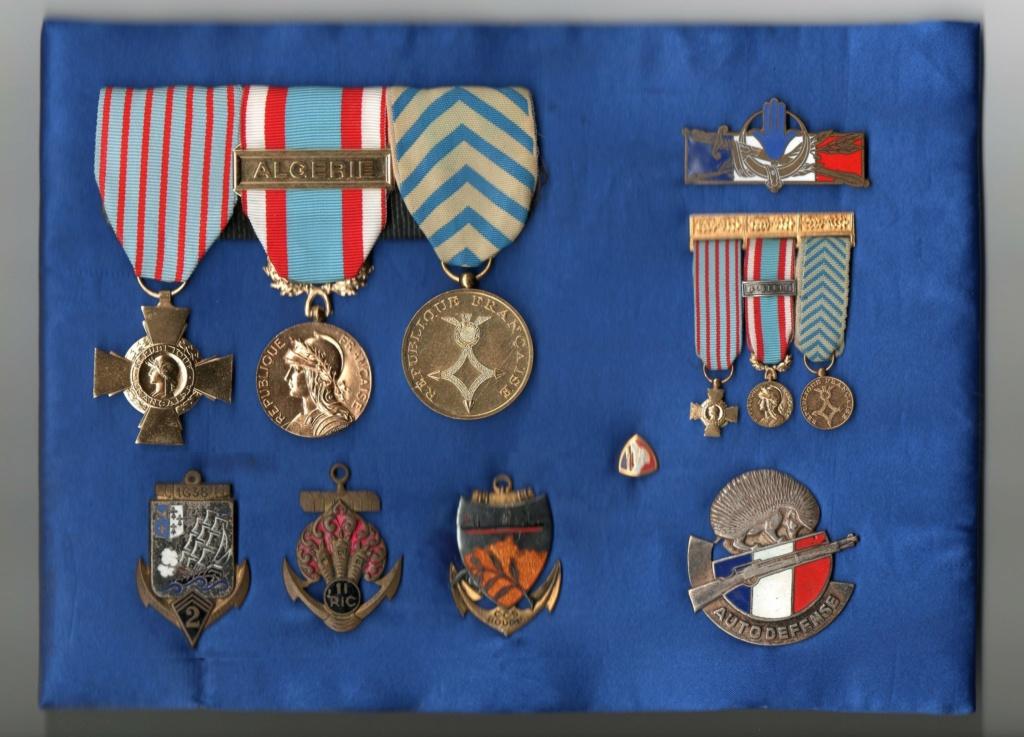 Identification - insigne Forces en AFN Img04010
