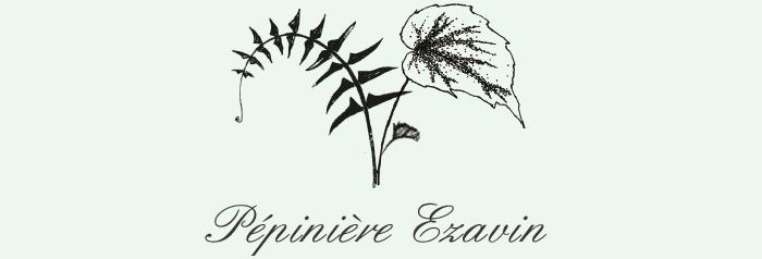 """Pépinière Ezavin """"Le monde des Fougères""""  Logo-p10"""
