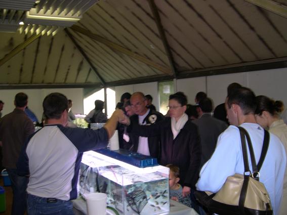 Bourse aux poissons le 14 octobre 2007 à Saint Pathus 03_dsc10