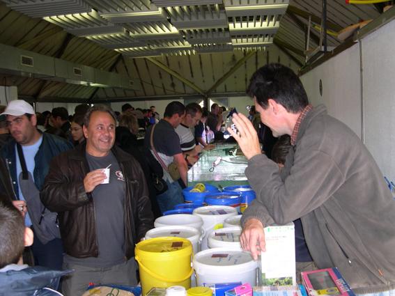 Bourse aux poissons le 14 octobre 2007 à Saint Pathus 05_dsc10