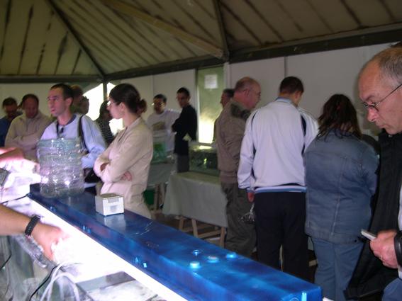 Bourse aux poissons le 14 octobre 2007 à Saint Pathus 09_dsc10
