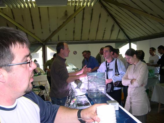 Bourse aux poissons le 14 octobre 2007 à Saint Pathus 10_dsc10