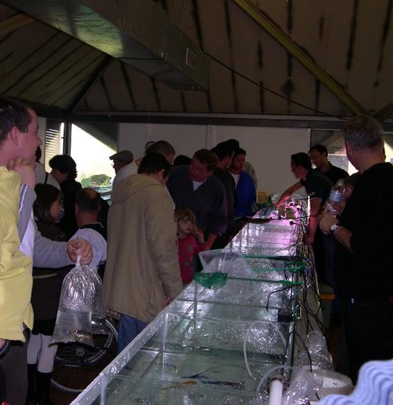 Bourse aux poissons le 14 octobre 2007 à Saint Pathus 12_dsc10