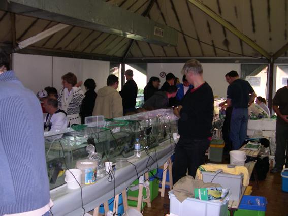 Bourse aux poissons le 14 octobre 2007 à Saint Pathus 13_dsc10