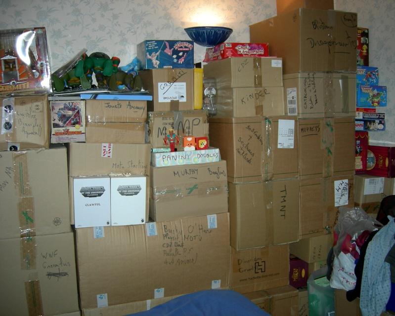 Trumania : des cartons aux vitrines... Dscn9714