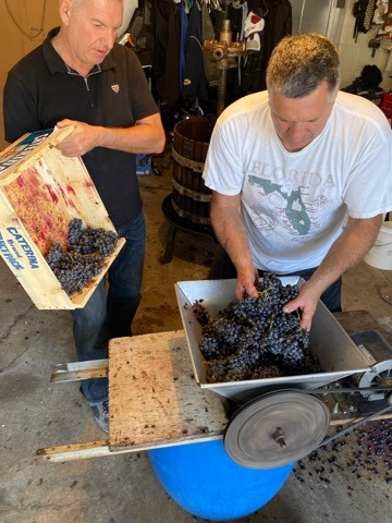 Y a pas qu'en France qu'on fait du vin! 70905711