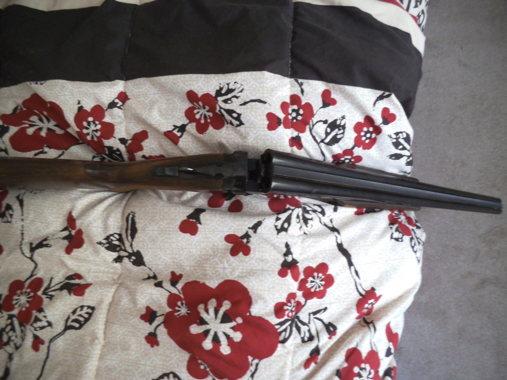 Désolé pour les anti-chasse Dscf2940