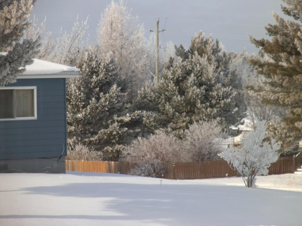 Mon pays......c'est l'hiver.....joualvert! Dscf3020