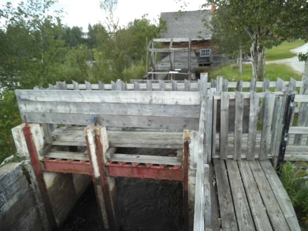 Petite balade autour du lac St-Jean. Dscf3559