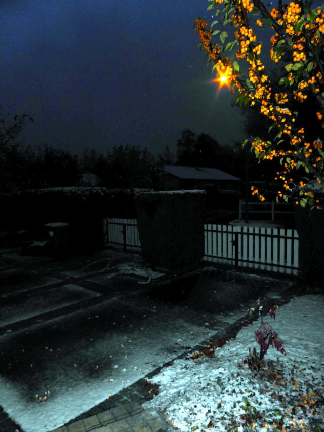Couleurs d'automne 30octo11