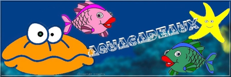 banniere merci Aquafi11