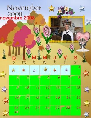 Novembre 2008 1ibvu110