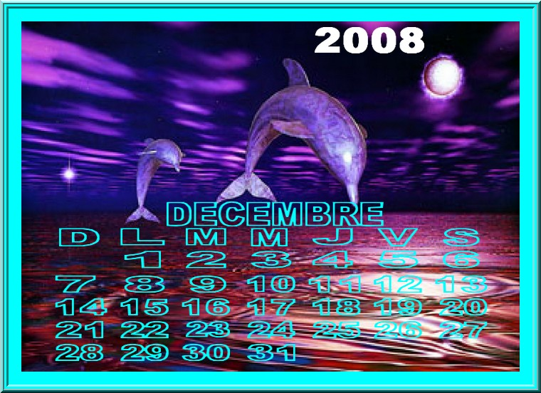 Décembre 2008 Zv8gn810