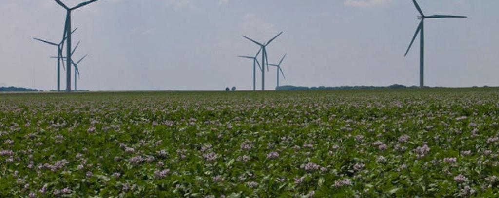 La promesse écologique : la politique du vent ou le mensonge de l'éolien  Eolien10