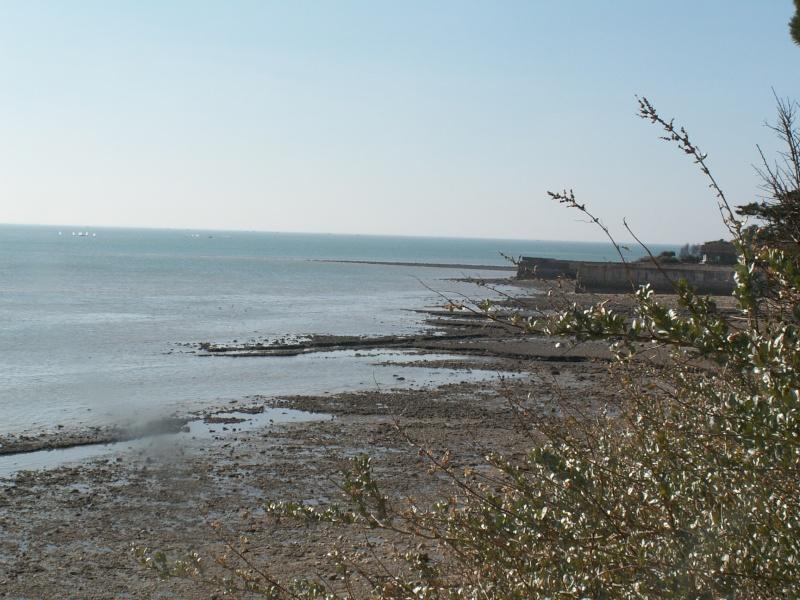 La Rochelle Pict0027