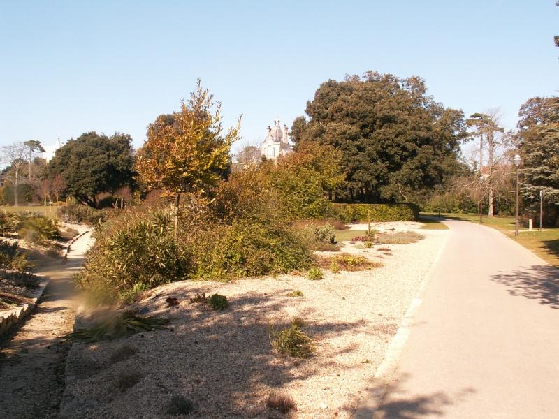 La Rochelle Pict0036