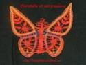 papillon bien coloré (attention Zizou prépare le coussin pour tes fesses) Papill10