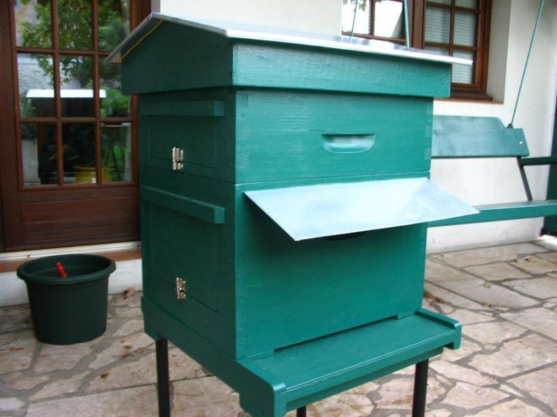La diversité des abeilles & celle des fleurs sauvages dé - Page 2 Ruche_10