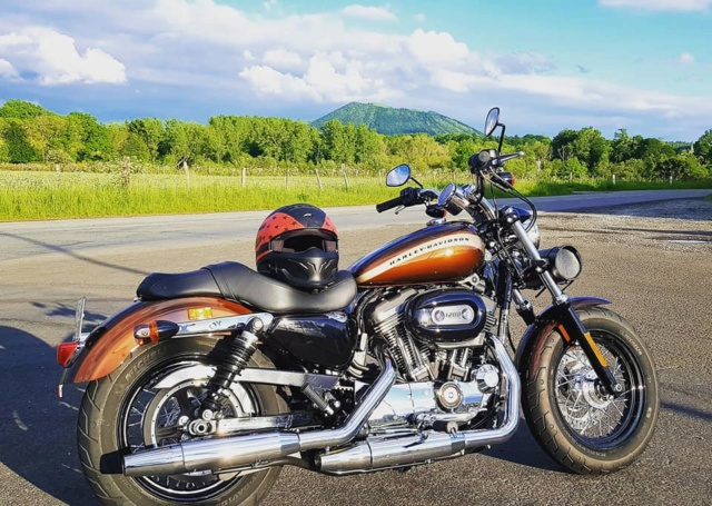 combien sommes nous en 1200 Sportster sur Passion-Harley - Page 37 62175512