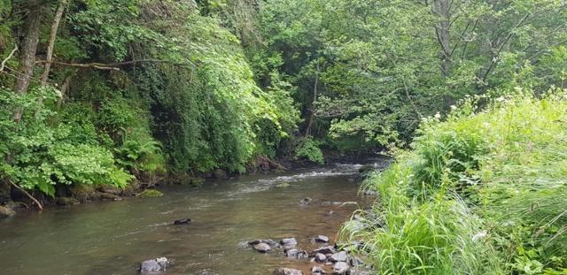 Compte rendu sortie Cantal 2019 Allanc12